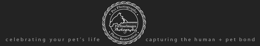 Kansas City Dog & Pet Photography – Dog Photographer, Pet Photographer – FixYourImages Photography logo